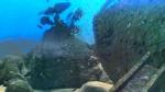 Риф 3D кадры