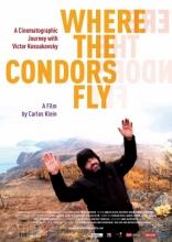 Там, где летают кондоры* плакаты