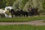 кадр №175115 из фильма Три мушкетера