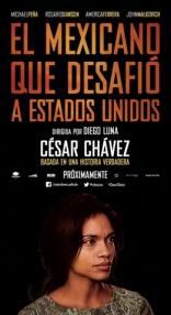 Чавес* плакаты