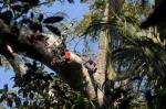 кадр №189695 из фильма Однажды в лесу