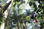 кадр №189709 из фильма Однажды в лесу
