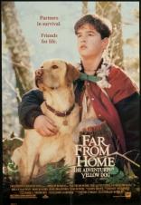 фильм Вдали от дома: Приключения жёлтого пса*