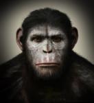 кадр №192362 из фильма Планета обезьян: Революция