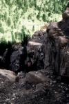В осаде 2: Темная территория кадры