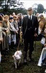 кадр №193892 из фильма Бэйб: Четвероногий малыш