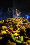 кадр №196293 из фильма Зип и Зап. Клуб стеклянных шариков