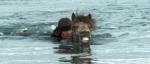 О лошадях и людях кадры