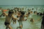кадр №19841 из фильма Челюсти