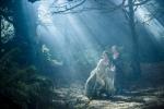 кадр №199256 из фильма Чем дальше в лес…