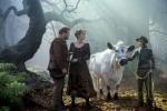 кадр №199259 из фильма Чем дальше в лес…