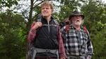 кадр №203501 из фильма Прогулка по лесам*