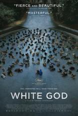 Белый бог плакаты