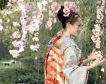 кадр №2082 из фильма Мемуары гейши