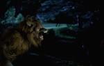кадр №208508 из фильма Реальные упыри