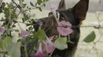 кадр №213860 из фильма Свидетели