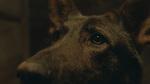 кадр №213865 из фильма Свидетели