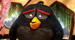 Angry Birds в кино кадры
