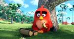 кадр №215396 из фильма Angry Birds в кино