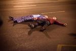 кадр №219171 из фильма Статус: свободен