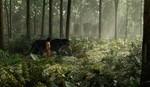 Книга джунглей кадры