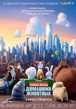 Тайная жизнь домашних животных плакаты