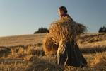 кадр №222738 из фильма Песнь заката
