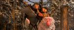 кадр №224562 из фильма Кубо. Легенда о самурае