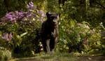 кадр №225382 из фильма Книга джунглей