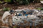 кадр №227140 из фильма Проклятие Спящей красавицы