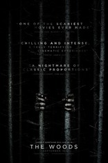 Ведьма из Блэр: Новая глава плакаты