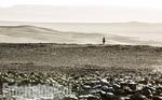 кадр №229055 из фильма Темная башня