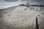 Ураган: Одиссея ветра кадры