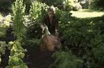 кадр №232145 из фильма Дом странных детей мисс Перегрин