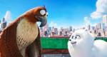 кадр №232924 из фильма Тайная жизнь домашних животных