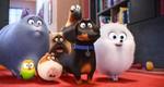 кадр №232925 из фильма Тайная жизнь домашних животных