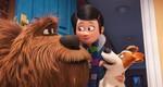 кадр №232930 из фильма Тайная жизнь домашних животных