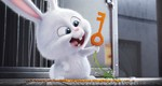 кадр №232933 из фильма Тайная жизнь домашних животных