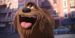 кадр №232935 из фильма Тайная жизнь домашних животных