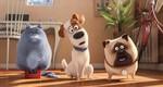кадр №232937 из фильма Тайная жизнь домашних животных