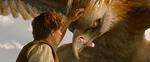 кадр №233027 из фильма Фантастические твари и где они обитают