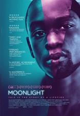 Лунный свет плакаты