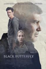 Черная бабочка плакаты