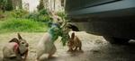 кадр №243454 из фильма Кролик Питер