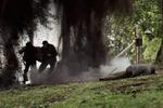 кадр №244795 из фильма Собибор