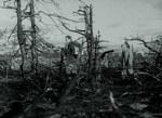 кадр №249126 из фильма Стыд