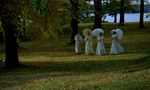 кадр №249948 из фильма Шёпоты и крики