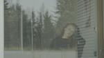 кадр №252796 из фильма Импульсо: Больше, чем фламенко