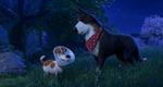 кадр №255346 из фильма Тайная жизнь домашних животных 2