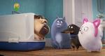 кадр №255347 из фильма Тайная жизнь домашних животных 2